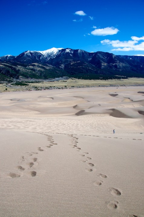 Taken at Great Sand Dunes National Park, CO.  Photo by Ania Owczarczyk.
